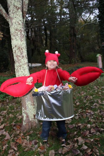 Lobster Bake Costume